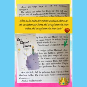 Book Snaps mit Book Creator am EDU-iPad