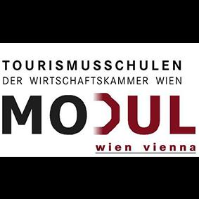 Modul_Website